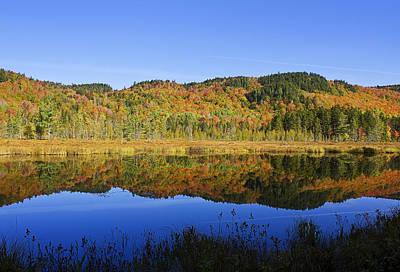 Photograph - Greenough Pond Reflections by John Vose