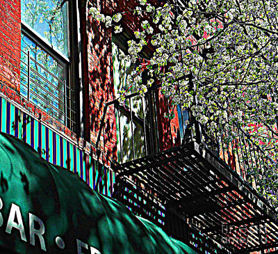 Photograph - Greenwich Village Fire Escape In The Spring by Miriam Danar