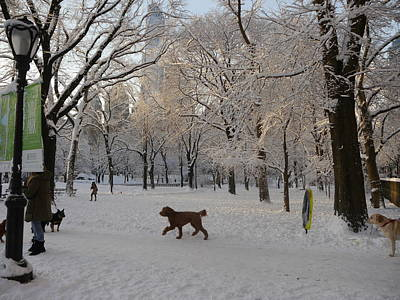 Photograph - Greeting Friends In Central Park by Winifred Butler