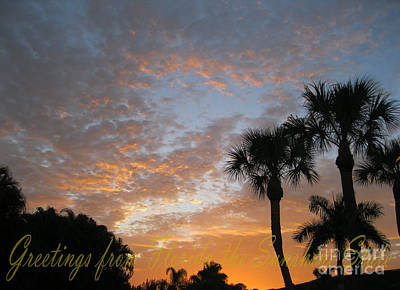 Photograph - Greetings From Florida The Sunshine State by Oksana Semenchenko