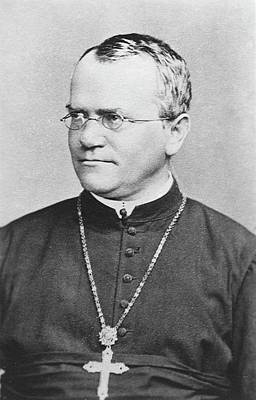Austrian Photograph - Gregor Mendel by American Philosophical Society