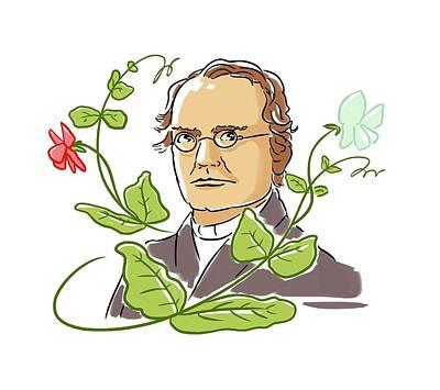 Gregor Mendel Art Print by Harald Ritsch