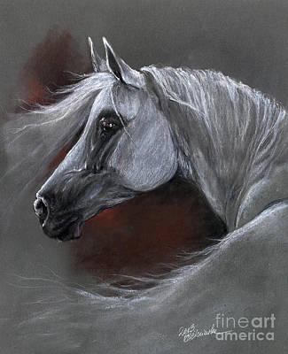 Grey Arabian Horse Soft Pastel Drawing 13 04 2013 Original