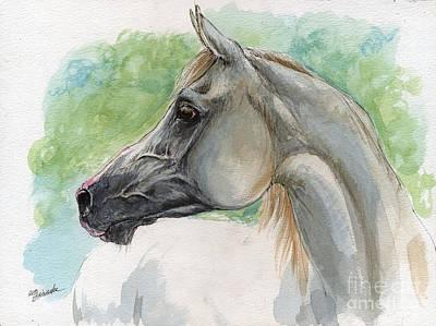Grey Arabian Horse Watercolor Painting 27 02 2013 Art Print