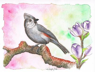 Grey Bird Tufted Titmouse Original