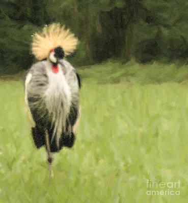 Crane Digital Art - Grey Crowned-crane  Balearica Regulorum by Liz Leyden