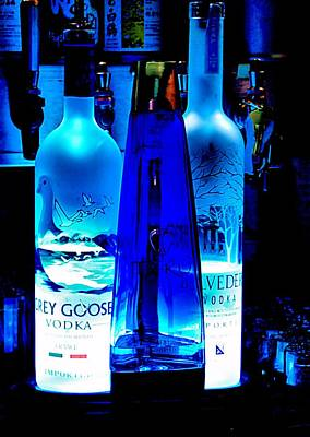 Photograph - Grey Goose by Bob Wall