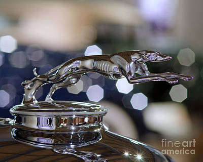 Art Print featuring the photograph Grey Hound Hood Ornament by JRP Photography