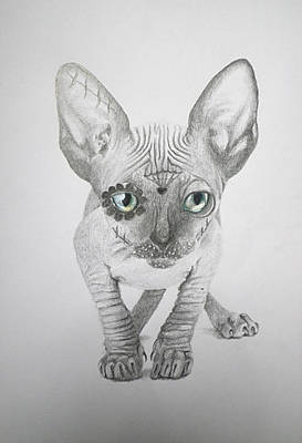 Sphynx Cat Art Drawing - Grey Sphynx Cat - Day Of The Dead Kitty Mask Series by Vera B