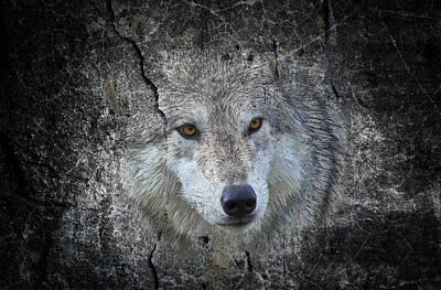 Grey Stone Art Print