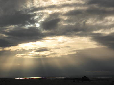 Photograph - Grey Sunset by Debra Madonna