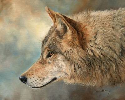 Animals Paintings - Grey Wolf 3 by David Stribbling