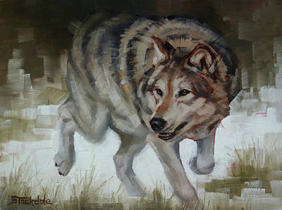 Painting - Grey Wolf On The Move by Margaret Stockdale