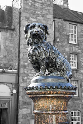 Photograph - Greyfriars Bobby by Diane Macdonald