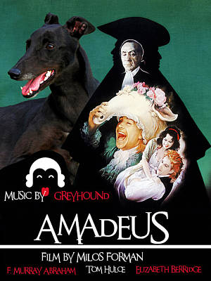 Painting - Greyhound Art Canvas Print - Amadeus Movie Poster by Sandra Sij