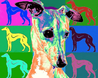Dog Painting - Greyhound by Char Swift