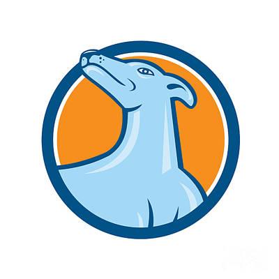 Dog Head Digital Art - Greyhound Dog Head Looking Up Cartoon by Aloysius Patrimonio