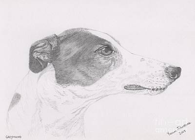 Drawing - Greyhound Head Study by Yvonne Johnstone