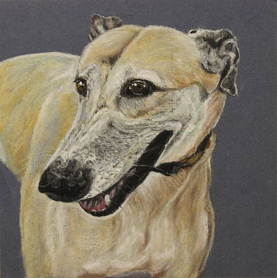 Dog Race Track Painting - Greyhound by Jeanne Fischer