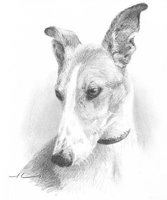 Drawing - Greyhound Pencil Portrait by Mike Theuer