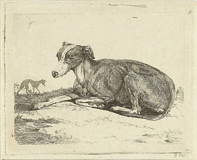 Greyhounds, Print Maker Jan Dasveldt Art Print