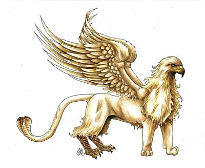 Drawing - Griffin by Scarlett Royal
