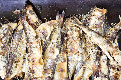 Tableware Photograph - Grilled Sardines by Tom Gowanlock