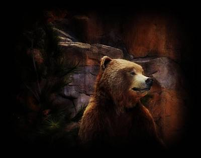 Photograph - Grizzle Bear by Michelle Frizzell-Thompson