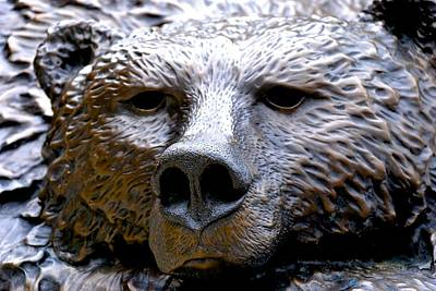 Photograph - Grizzly 4 by Charlie Brock