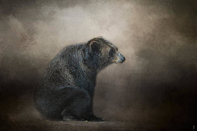 Sitting Bear Photograph - Grizzly At Rest - Wildlife - Jai Johnson by Jai Johnson
