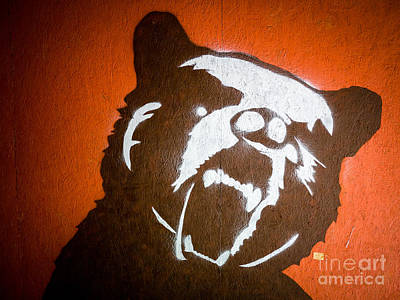 Spray Paint Photograph - Grizzly Bear Graffiti by Edward Fielding