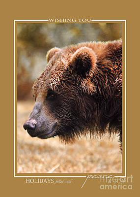 Photograph - Grizzly Bear Wildlife Christmas Cards by Jai Johnson