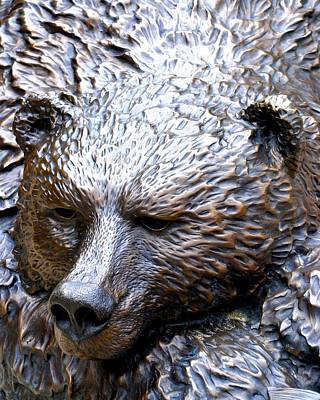 Photograph - Grizzly by Charlie and Norma Brock