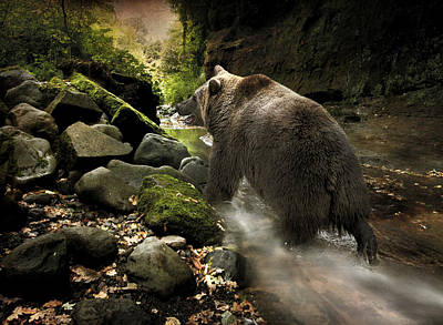 Grizzly Creek Art Print by Roy  McPeak