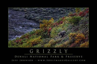Jeff Johnson Photograph - Grizzly by Jeff Johnson