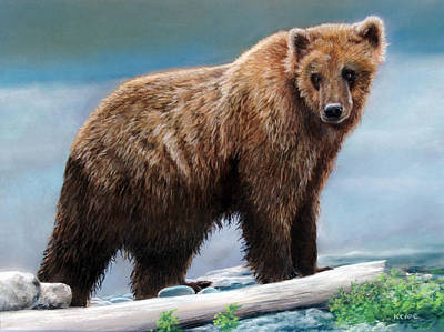 Drawing - Grizzly by Karen Cade