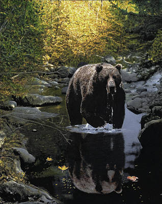 Drawing - Grizzly Reflection by Brent Ander