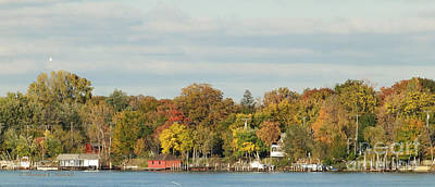 Photograph - Island Fall Colors - M Landscapes Fall Collection No. Lf38 by Monica C Stovall