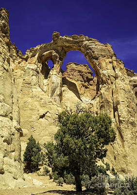 Photograph - Grosvenors Arch I by Stuart Gordon