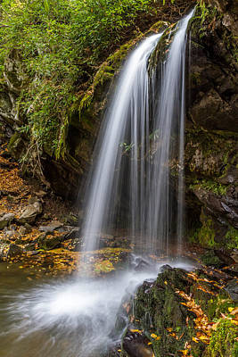 Grotto Falls Great Smoky Mountains Art Print