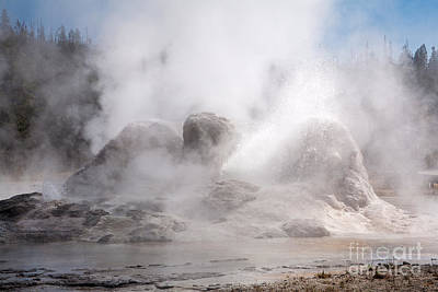 Photograph - Grotto Geyser In Upper Geyser Basin In Yellowstone National Park by Fred Stearns