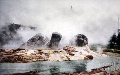 Photograph - Grotto Geyser Yellowstone National Park by NPS Photo Detroit Photographic Co