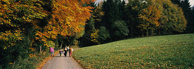Lush Foliage Photograph - Group Of People Walking On A Walkway by Panoramic Images
