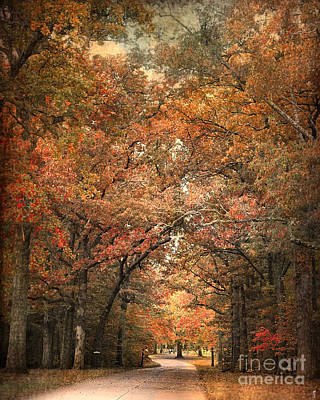 Photograph - Grove Of Memories by Jai Johnson