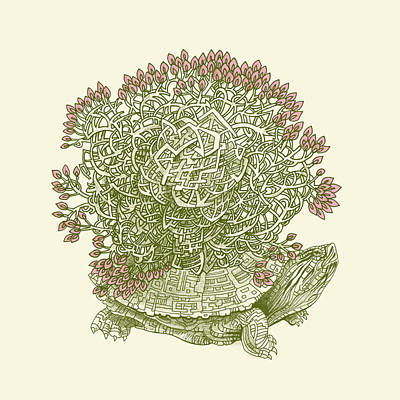Turtle Wall Art - Drawing - Grow by Eric Fan