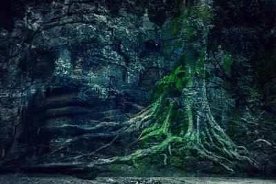 Tree Roots Digital Art - Growing Wisdom by Joshua Van Lare