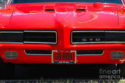 Photograph - Grrr  Gto Grill by Mark Spearman