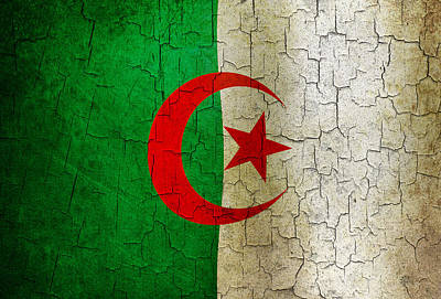 Digital Art - Grunge Algeria Flag by Steve Ball