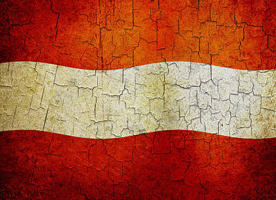Digital Art - Grunge Austria Flag by Steve Ball