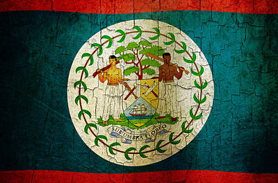 Digital Art - Grunge Belize Flag  by Steve Ball